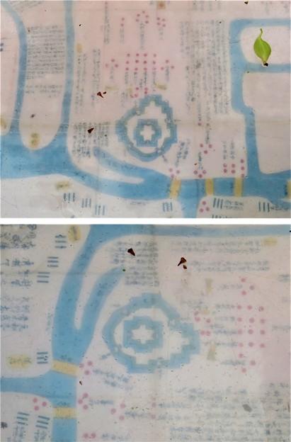 茶臼山・茶臼山古墳(大阪市天王寺区)