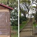 Photos: 茶臼山・茶臼山古墳(大阪市天王寺区)陣跡碑