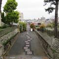 Photos: 阿部野神社(大阪市阿倍野区)西参道