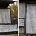Photos: 阿部野神社(大阪市阿倍野区)