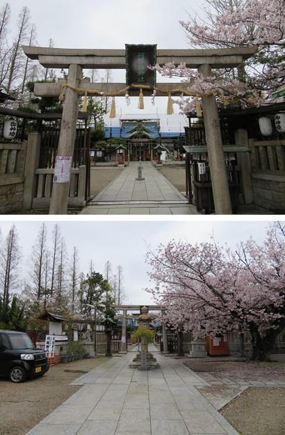 阿部野神社(大阪市阿倍野区)参道