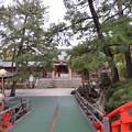 Photos: 住吉大社(大阪市住吉区)反橋より