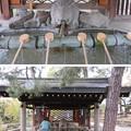 Photos: 住吉大社(大阪市住吉区)手水舎