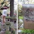 Photos: 住吉大社(大阪市住吉区)誕生石