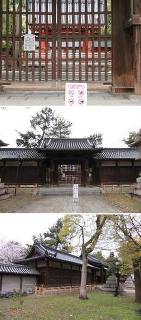 Photos: 住吉大社(大阪市住吉区)南門 ・石舞台