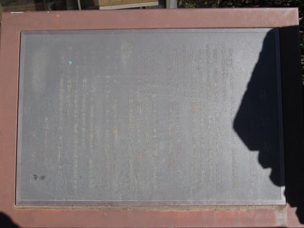 加賀国大聖寺藩下屋敷・品川弥二郎邸跡/須藤公園 (文京区千駄木3丁目)