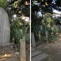 Photos: 洗足池公園 (大田区南千束)南洲西郷先生留魂祠