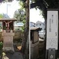 Photos: 泰叡山瀧泉寺 目黒不動尊(目黒区)伏見稲荷