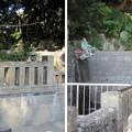 Photos: 11.10.31.泰叡山瀧泉寺 目黒不動尊(目黒区)独鈷の滝