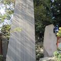 Photos: 泰叡山瀧泉寺 目黒不動尊(目黒区)青木昆陽碑