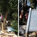 Photos: 11.10.31.泰叡山瀧泉寺 目黒不動尊(目黒区)勢至堂