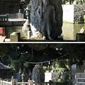 Photos: 泰叡山瀧泉寺 目黒不動尊(目黒区)水かけ不動