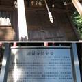 Photos: 12.11.14.泰叡山瀧泉寺 目黒不動尊(目黒区)勢至堂