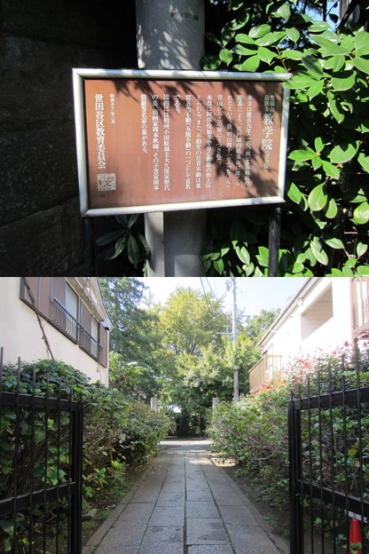 Photos: 竹園山最勝寺教学院 目青不動尊(世田谷区)