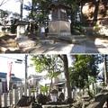 半田稲荷神社(葛飾区)白狐殿参道