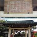 Photos: 葛西神社(葛飾区)手水舎