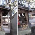 Photos: 葛西神社(葛飾区)道祖神・水神宮