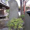 Photos: 葛西神社(葛飾区)