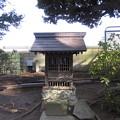 Photos: 葛西神社(葛飾区)三峯神社