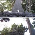 Photos: 葛西神社(葛飾区)冨士大神