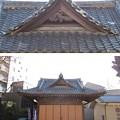 亀有香取神社(葛飾区)神楽殿(旧拝殿)