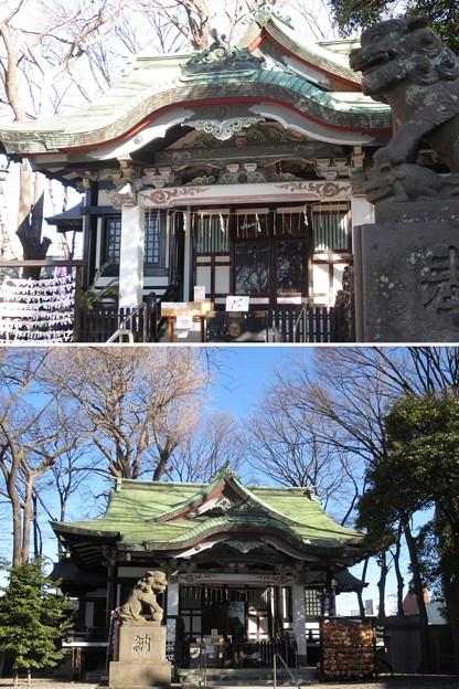亀有香取神社(葛飾区)拝殿