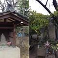 Photos: 延命寺(葛飾区青戸)