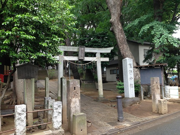 堀ノ内熊野神社(杉並区)