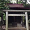 Photos: 堀ノ内熊野神社(杉並区)稲荷社・第六天社合殿