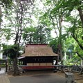 Photos: 堀ノ内熊野神社(杉並区)神楽殿