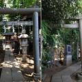 Photos: 高円寺氷川神社(杉並区)気象神社