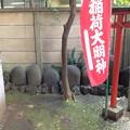 Photos: 高円寺氷川神社(杉並区)力石