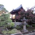 Photos: 祥雲寺(広尾5丁目)鐘楼