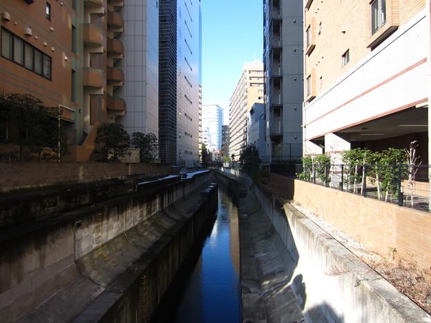 渋谷川 新橋(渋谷区恵比寿1丁目・広尾5丁目)