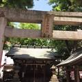 恵比寿神社(渋谷区恵比寿)