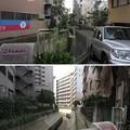 Photos: 渋谷川 庚申橋(渋谷区東)