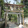 Photos: 渋谷氷川神社 (渋谷区東)