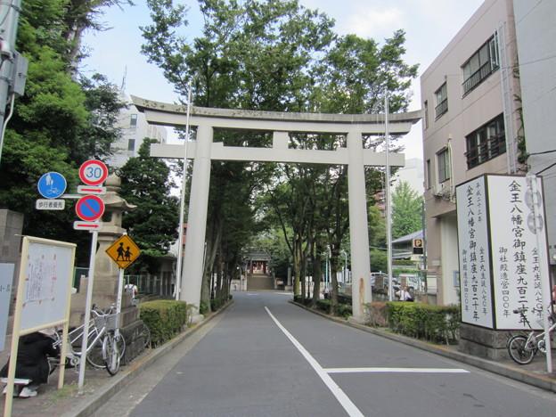金王八幡宮参道/渋谷城水堀跡(渋谷区渋谷)