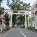 Photos: 金王八幡宮参道/渋谷城水堀跡(渋谷区渋谷)