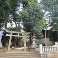 金王八幡宮/渋谷城水堀跡(渋谷区渋谷)