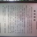 豊榮稲荷神社/渋谷城郭?(渋谷区渋谷3丁目)庚申塔群