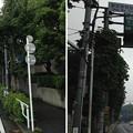 鍋島松平肥前守屋敷南東角(渋谷区千駄ヶ谷1丁目)