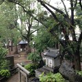 鳩森八幡神社(千駄ヶ谷八幡神社。渋谷区)富士塚より
