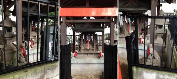 鳩森八幡神社(千駄ヶ谷八幡神社。渋谷区)甲賀稲荷