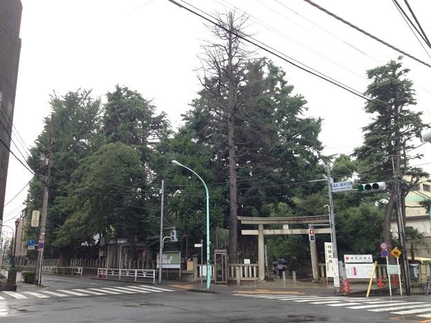 鳩森八幡神社(千駄ヶ谷八幡神社。渋谷区)北東鳥居