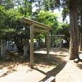 宝円寺(金沢市)前田家墓所(側室・子女)