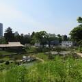 Photos: 金沢城(石川県営 金沢城公園)玉泉院丸