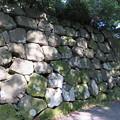 Photos: 金沢城(石川県営 金沢城公園)本丸南西下石垣