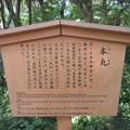 Photos: 金沢城(石川県営 金沢城公園)本丸