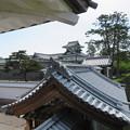 Photos: 金沢城(石川県営 金沢城公園)河北門